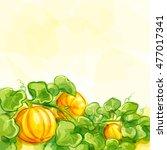 vector background with pumpkins ... | Shutterstock .eps vector #477017341