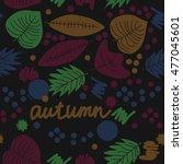 seamless   pattern with  autumn ... | Shutterstock . vector #477045601