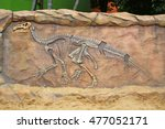 Model Dinosaur Fossil On The...