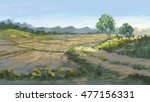 country road in rice field... | Shutterstock . vector #477156331