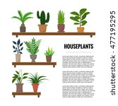 flat style house plants and... | Shutterstock .eps vector #477195295