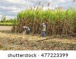 tay ninh  vietnam   nov 25 ... | Shutterstock . vector #477223399