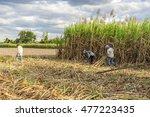 tay ninh  vietnam   nov 25 ... | Shutterstock . vector #477223435