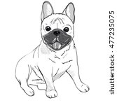 bulldog  dog   vector... | Shutterstock .eps vector #477235075