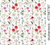 wild flowers illustrations.... | Shutterstock . vector #477387787