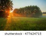 rural landscape  field and grass | Shutterstock . vector #477624715