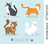 Stock vector cat set flat icons vector illustration cartoon 477631141