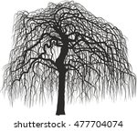 mulberry tree without leaves | Shutterstock .eps vector #477704074