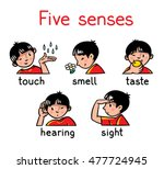 icons of five senses   touch ... | Shutterstock .eps vector #477724945