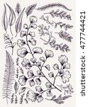 leaf set. vintage floral... | Shutterstock .eps vector #477744421