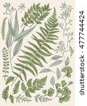 leaf set. vintage floral... | Shutterstock .eps vector #477744424