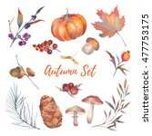 Watercolor Autumn Set Of Leave...