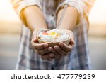ice cream in coconut shell with ... | Shutterstock . vector #477779239