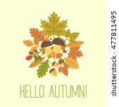 hello autumn vector... | Shutterstock .eps vector #477811495