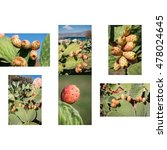 6 Phothos Collage Of Ripe...