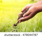 soil compost  farmer hands...   Shutterstock . vector #478044787