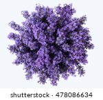 Stock photo top view of a bouquet of purple lavender flowers on a white background bunch of lavandula flowers 478086634
