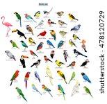 big set birds. birds flying ... | Shutterstock .eps vector #478120729
