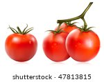photo realistic vector... | Shutterstock .eps vector #47813815
