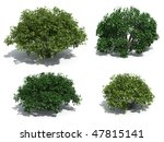 bushes isolated on white... | Shutterstock . vector #47815141