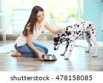 female owner feeding her... | Shutterstock . vector #478158085