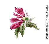 hand drawn pink peony with...   Shutterstock . vector #478159351