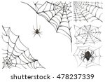 Web And Black Poisonous Spider...