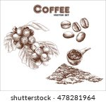 coffea  coffee beans and ground ... | Shutterstock .eps vector #478281964