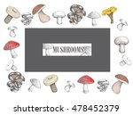 Design Of Mushrooms Vector...
