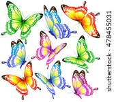 color butterflies isolated on a ... | Shutterstock . vector #478455031