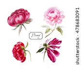 watercolor set of peonies. hand ... | Shutterstock . vector #478683091