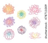 set of flowers hand draw | Shutterstock .eps vector #478711009