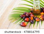 commercial palm oil cultivation....   Shutterstock . vector #478816795
