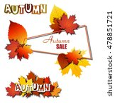 autumn sale banner with leaves  ... | Shutterstock . vector #478851721