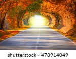 autumn fall road landscape  ... | Shutterstock . vector #478914049