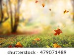 beautiful  landscape with... | Shutterstock . vector #479071489
