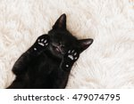 Stock photo cute little black kitten sleeps on fur white carpet 479074795