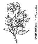 vector tattoo roses with leaves ... | Shutterstock .eps vector #479122261