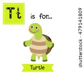 T Letter Tracing. Turtle...