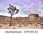 twilight in joshua tree... | Shutterstock . vector #47919172