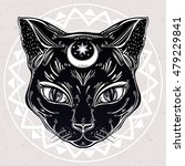 black cat head portrait with... | Shutterstock .eps vector #479229841
