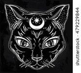 Black Cat Head Portrait With...
