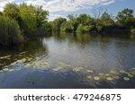 summer landscape.river buzuluk... | Shutterstock . vector #479246875