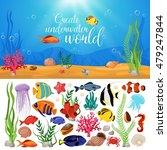 Sea Life Animals Plants...