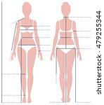 female body in full length for... | Shutterstock .eps vector #479255344