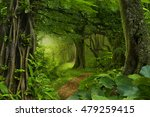 thailand jungle | Shutterstock . vector #479259415