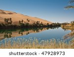 ubari oases of the south...   Shutterstock . vector #47928973