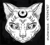 black cat head portrait with...   Shutterstock .eps vector #479394787