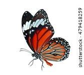 orange butterfly  common tiger  ... | Shutterstock . vector #479418259