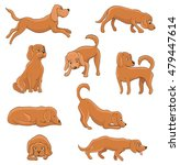 Stock vector cute cartoon dog in various poses funny pet sitting standing running waiting lying playing 479447614